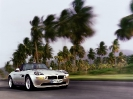z8_silver_front_trees